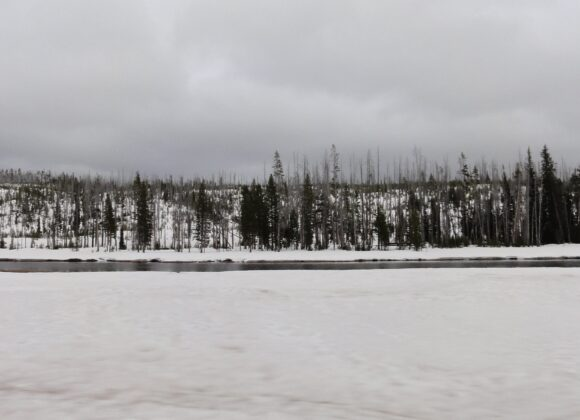 冰上〈冬之旅〉
